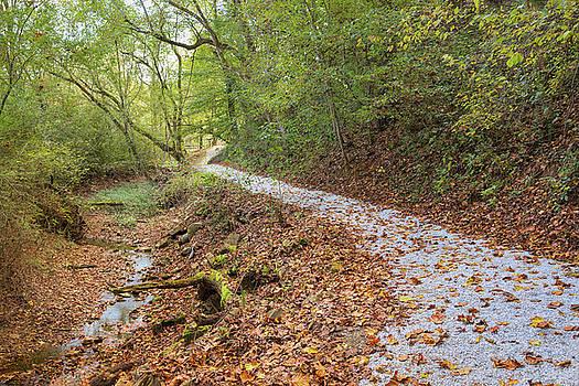 A Pleasant Walk by John M Bailey