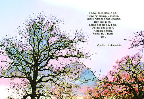 A Poem and a Tree I by Carolina Liechtenstein