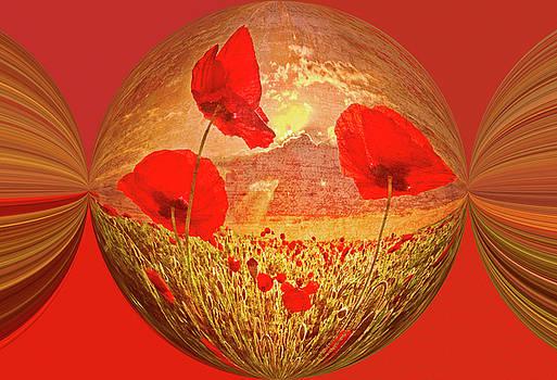 Debra and Dave Vanderlaan - A Poppy Kind of Morning Circles