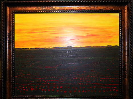 A Poppy Sunset by Chris Heitzman