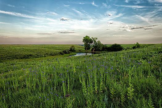 Scott Bean - A Prairie Pond