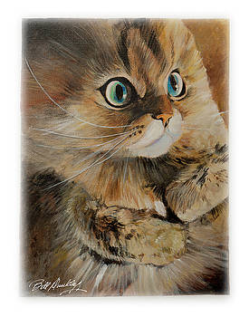 A Pretty Cat by Bill Dunkley