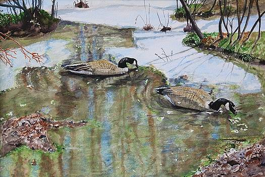 A Promise of Spring by Jody Neugebauer