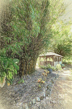 A quiet place by David Lane