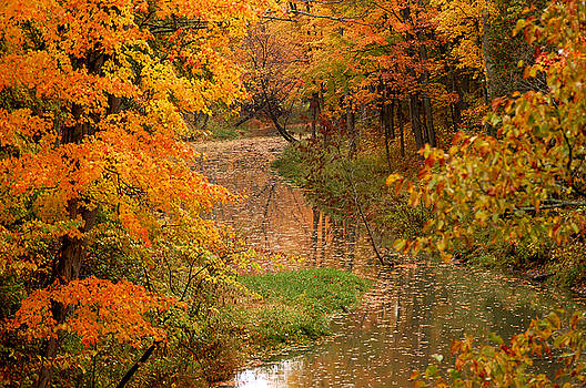A Quiet River in Fall by Linda McRae