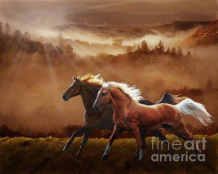 A Race at Sunset by Melinda Hughes-Berland