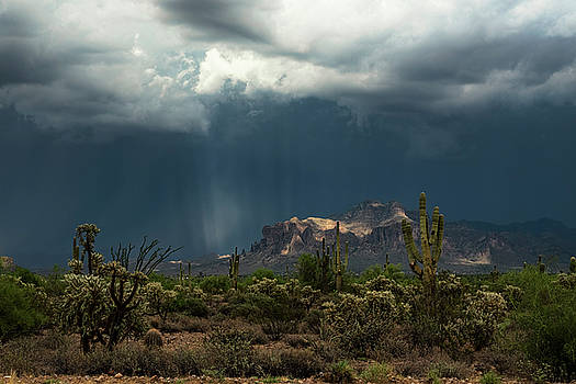 Saija Lehtonen - A Rainy Evening in the Superstitions
