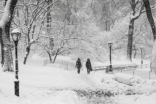 A Ramble in the Snow by Cornelis Verwaal