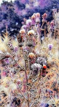A Rather Thorny Subject by Abbie Shores