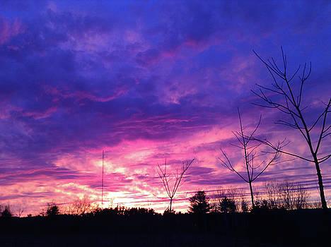 A Real Sunset by Randi Shenkman