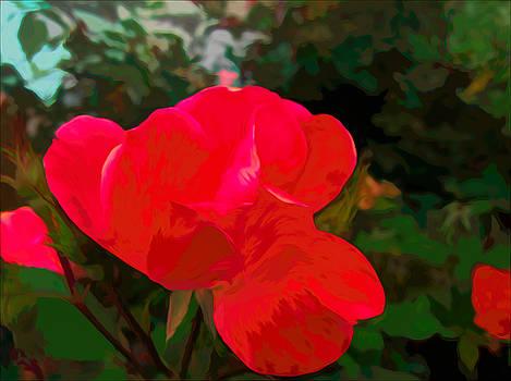 A Red Red Rose by Debra Lynch