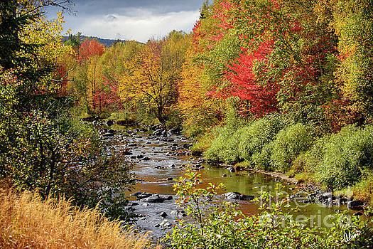 A River Runs Through by Alana Ranney