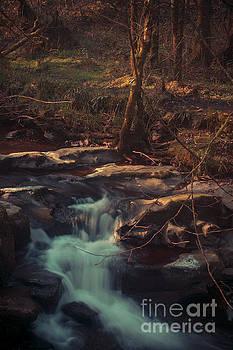 Marc Daly - A river runs through it