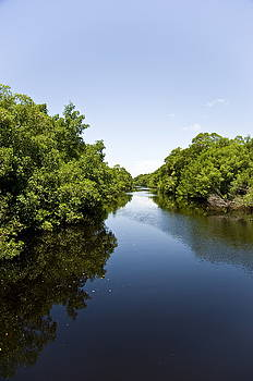 A River Runs Through It by Sarita Rampersad