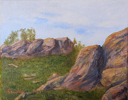 A Rocky Start by Terry Sonntag