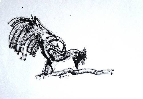 A Rooster enjoying it's shadow by Daniel David Talegaonkar