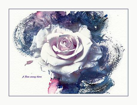 A rose among thorns by Athala Carole Bruckner