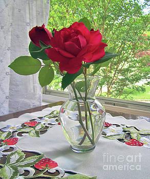 A Rose Celebrates Summer by Jeannie Allerton