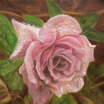 A Rose by Kathy Knopp