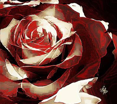A Rose Of Love by Lynda Payton