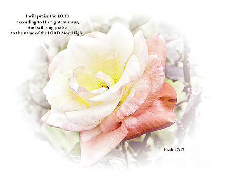 A Rose with Psalm 7.17 by TN Fairey