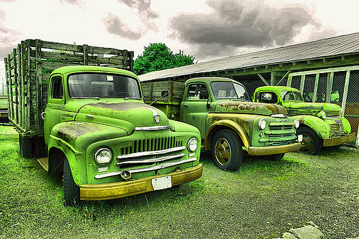 A row of old beauties by Jeff Swan