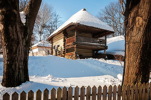 A rustic house in winter with a pet cat outside in the cold by Daniela Constantinescu