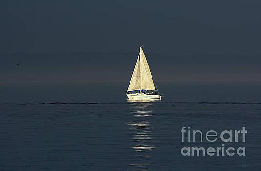 Susan Wiedmann - A Sailboat Capturing Light