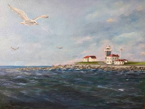 A Seagull's View by Anne Barberi