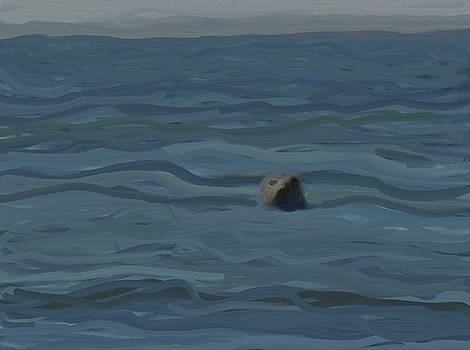 A seal sees me by Harry Spitz
