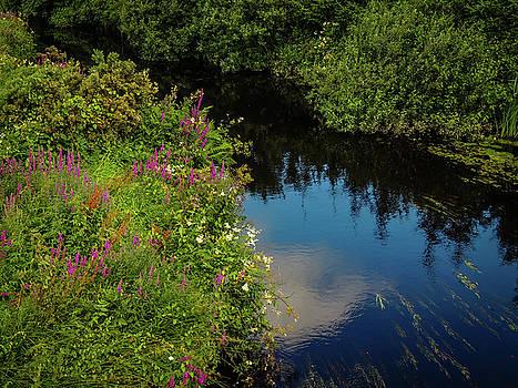 A serene scene in the magical Irish countryside by James Truett