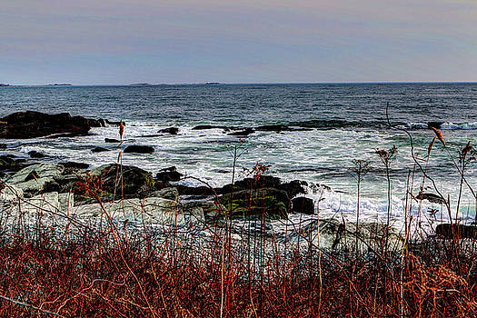 A shoreline in New England by Tom Prendergast