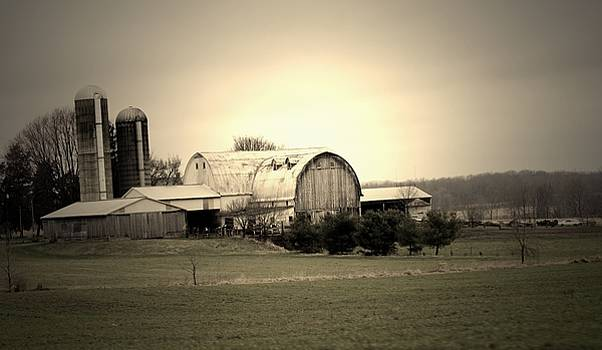 A Shreve Holstein Farm by R A W M