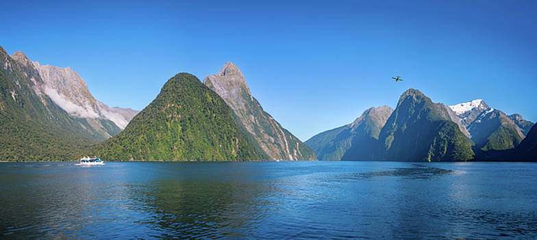A small boat in the morning at Milford Sound by Daniela Constantinescu