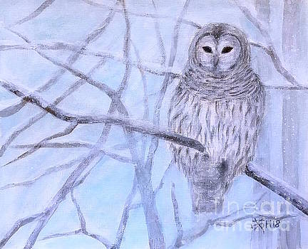 A barred owl by Wonju Hulse