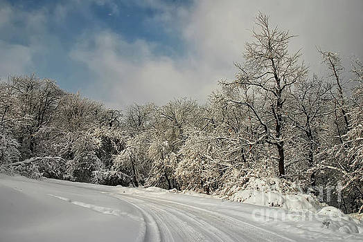 Lois Bryan - A Snowy Road In The Laurel Highlands