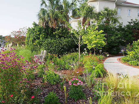 A South Carolina Garden in May by Louise Heusinkveld
