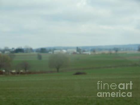 Christine Clark - A Spring Amish Vista