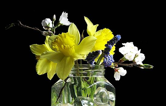 A Spring Bouquet by Angela Davies