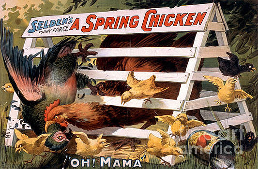 A Spring Chicken Farm Decor by Edward Fielding