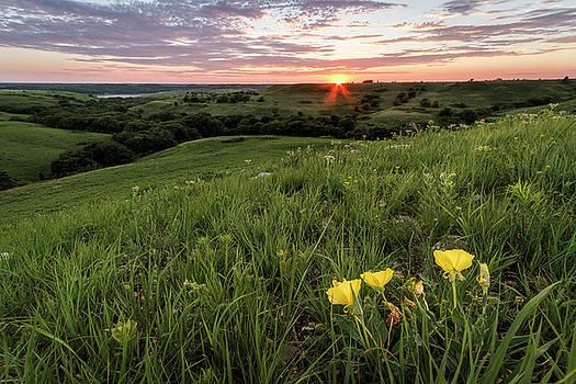 A Spring Evening by Scott Bean