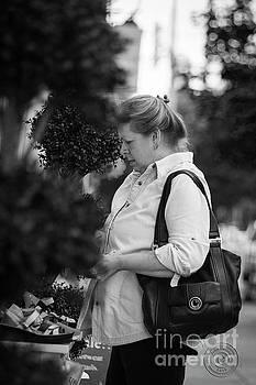 A Starlet Shopper by John Herzog