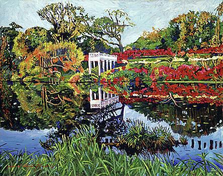 A Still Lake by David Lloyd Glover