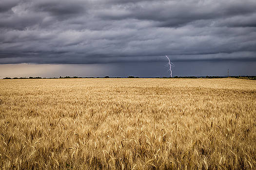 Scott Bean - A Storm Passing By