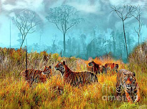 A Streak of Tigers by Dale E Jackson
