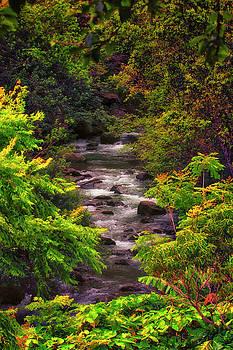 A Stream Runs Through It by Linda Tiepelman