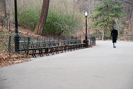a stroll through Central Park by Joe Scoppa
