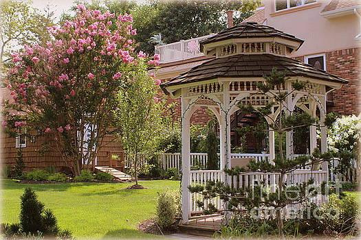 A Summer Garden by Dora Sofia Caputo Photographic Art and Design