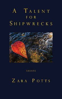 Don Mitchell - A Talent for Shipwrecks book cover