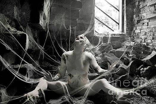 A Tangled Web of Lies by Lynn Jackson
